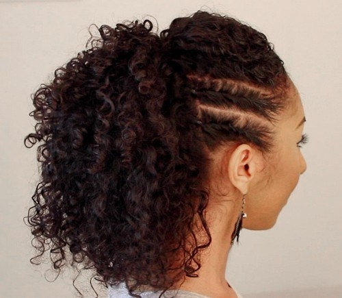 natural curly hair hairstyles 11 - Natural Curly Hair Hairstyles