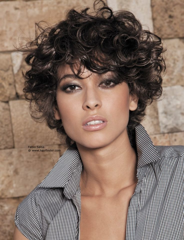 natural curly short hairstyles 3 - Natural Curly Short Hairstyles