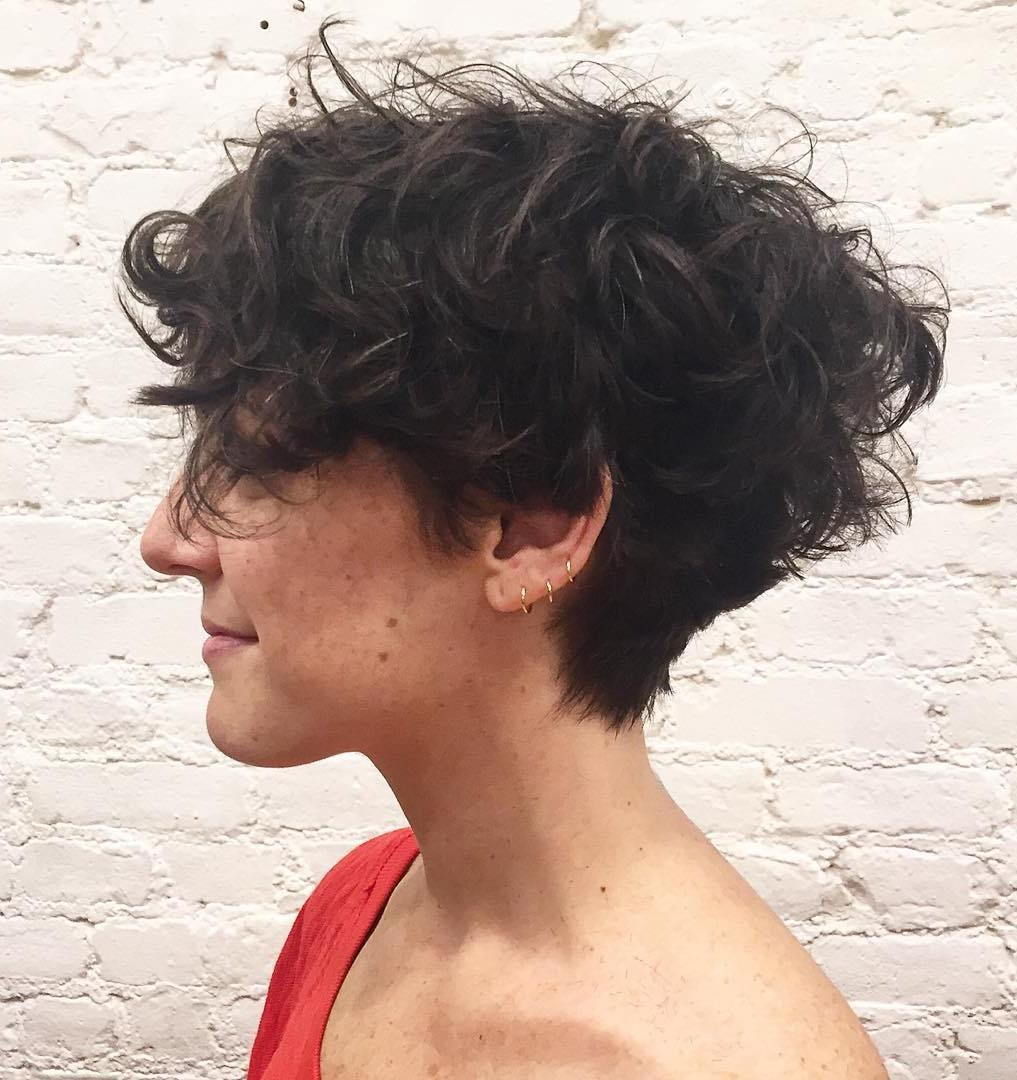 short haircuts with curly hair 8 - Short Haircuts With Curly Hair