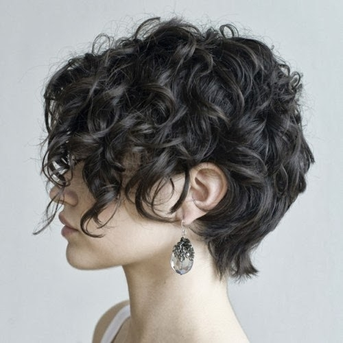 womens short curly haircuts 7 - Women's Short Curly Haircuts