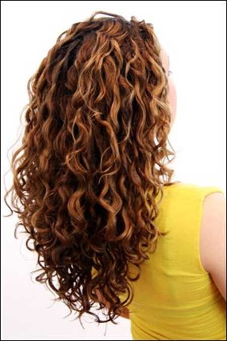 curly hairstyles for long hair 2 - Curly Hairstyles For Long Hair