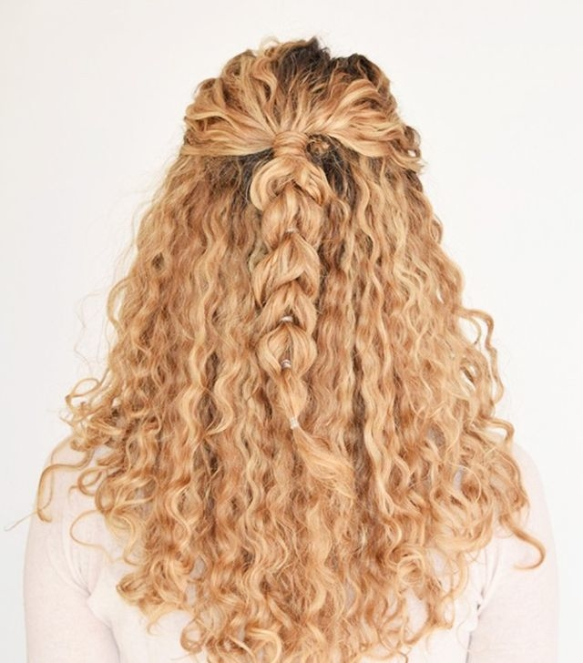 easy hairstyles for curly hair - Easy Hairstyles For Curly Hair